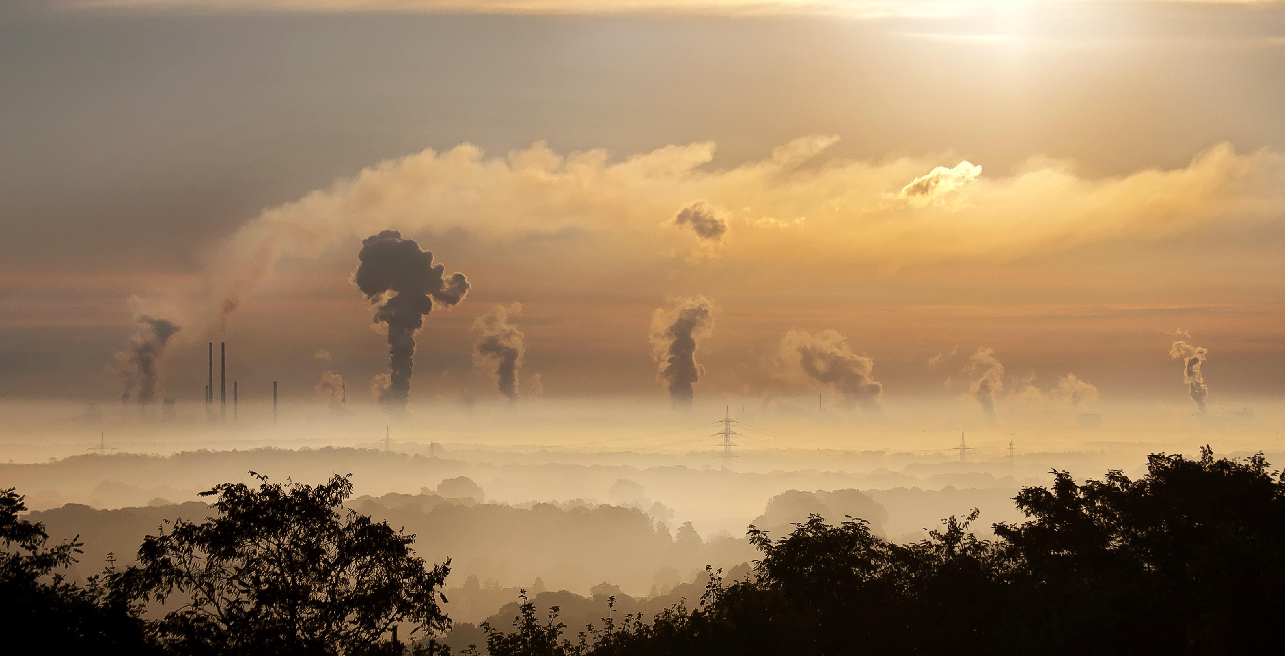 """""""procesem w smog"""""""